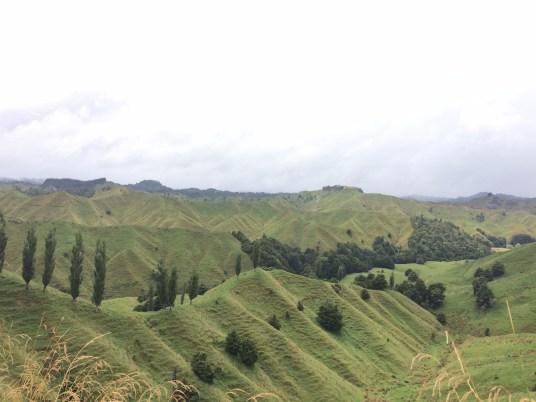 montagnes vertes de l'île du nord de nouvelle-zélande