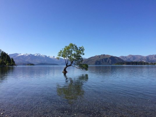les-exploratrices-three-wanaka-nz