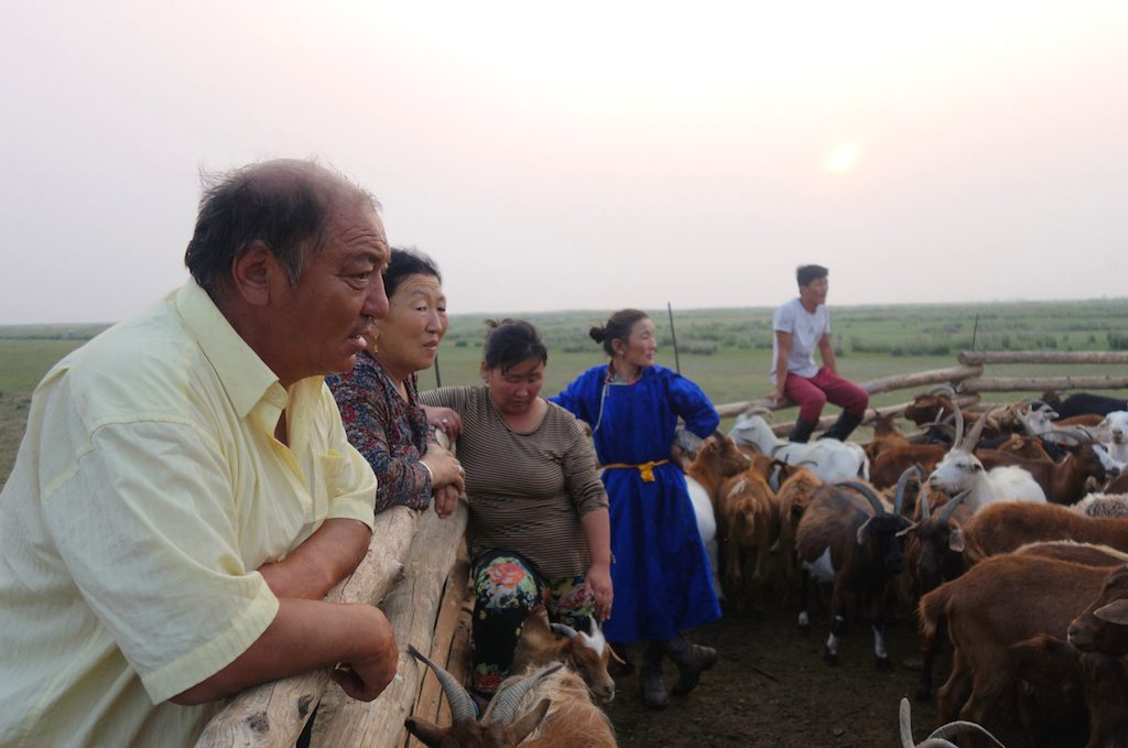 mongolie-famille-nomade-enclos