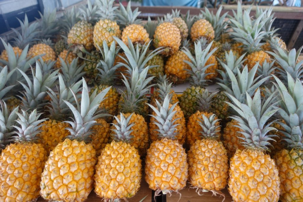 les-exploratrices-maurice-mahebourg-marche-ananas