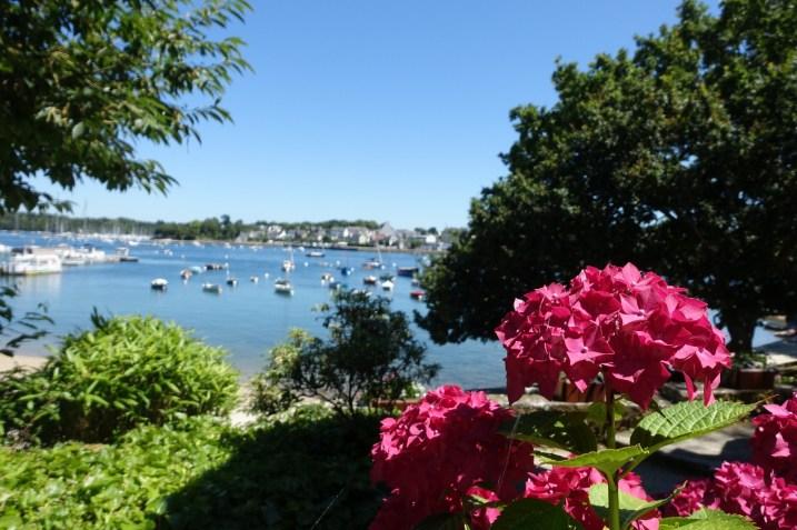 les-exploratrices-benodet-finistere-sainte-marine-fleurs
