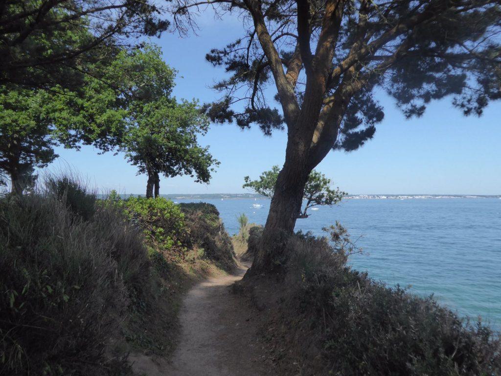 les-exploratrices-benodet-finistere-promenade-beg-meil-foret-mer