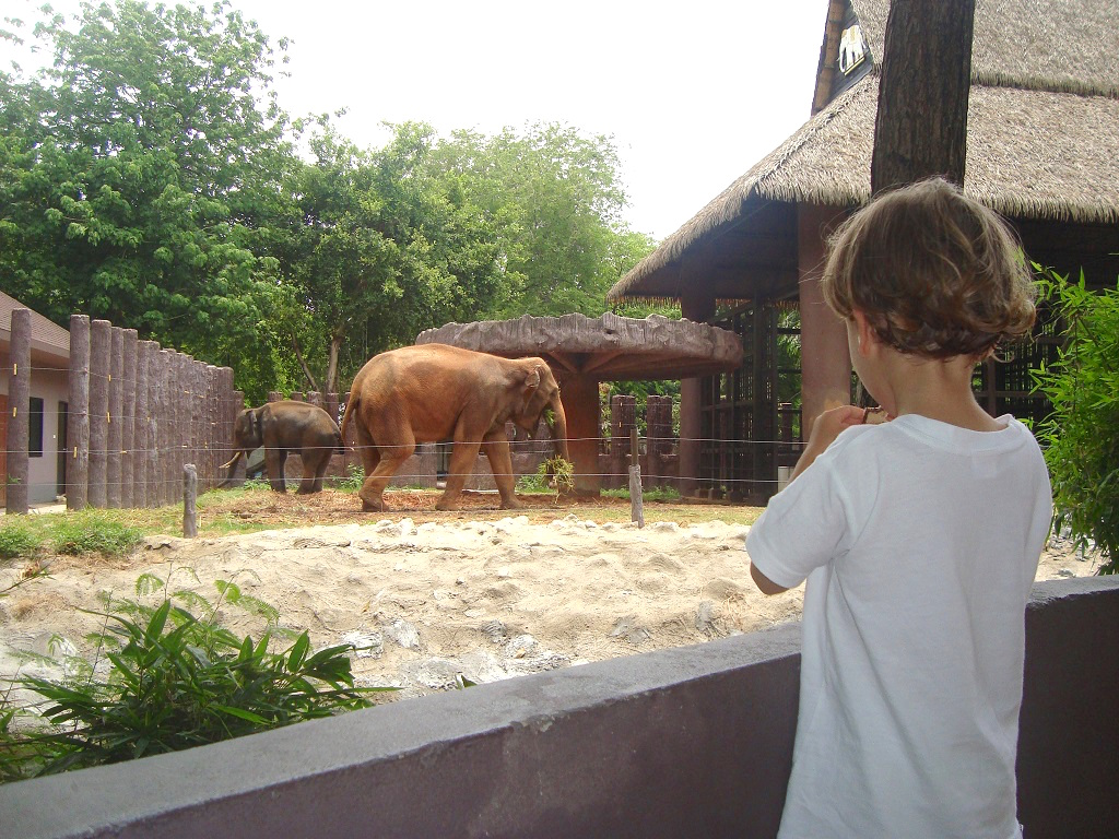 zoo-bangkok-thailande-les-exploratrices-voyager-avec-un-enfant
