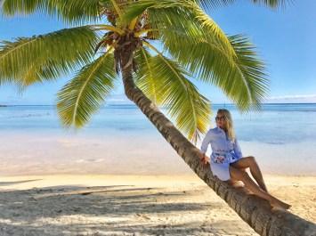 le palmier des tipaniers à Moorea