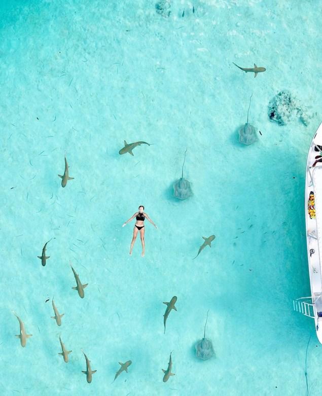nager avec les raies à Moorea en Polynésie Française
