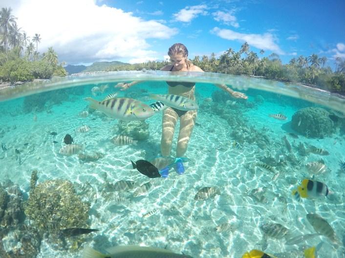 la polynésie française et le jardin de corail de tahaa