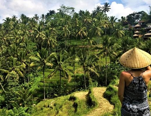 tegalalang parmi les visites incontournables à bali