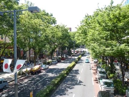 tokyo-omotesando-avenue