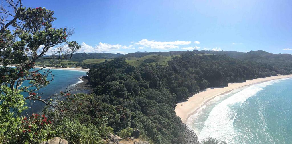les visites incontournables en Nouvelle-Zélande : Péninsule du Coromandel