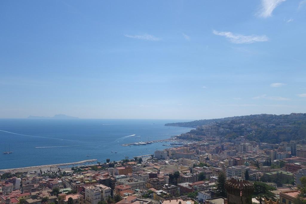 photo 4 - coline