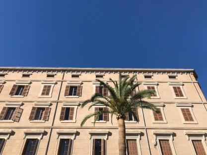 palma-mallorca-bonnes-adresses-facade-palmier