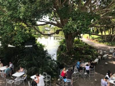 australie-bonnes-adresses-a-sydney-botanic-gardens-cafe-jardin