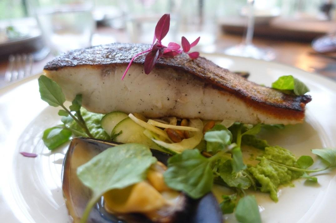 australie-sydney-jervis-bay-paperbark-camp-the-gunyah-restaurant-poisson