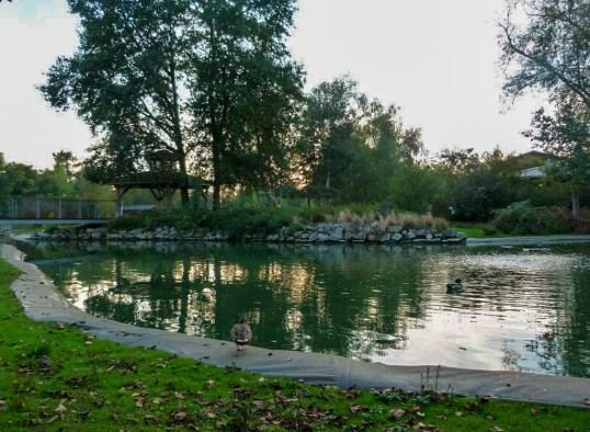 bordeaux-lac