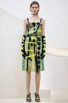 CHRISTOPHER KANE PRE-FALL 2016 COLLECTION 22