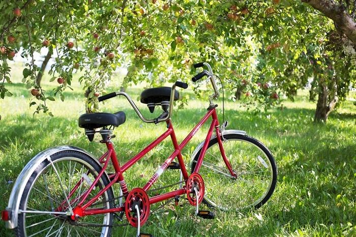 tandem-bike-905067_960_720_GF