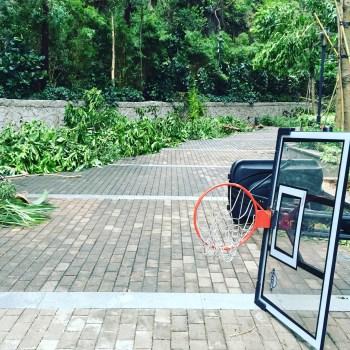 Post typhon ...
