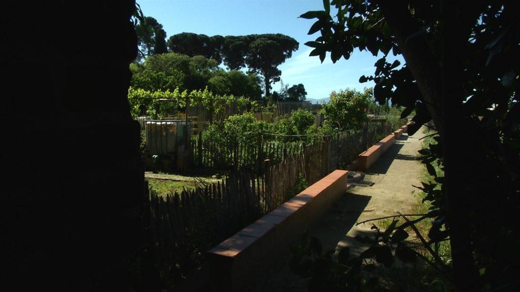 Le jardin familial du Haut-Vernet. Image du film Le temps du jardin, réalisé et produit par Olivier Moulaï, résidence Occit'Avenir au Lycée Maillol Perpignan