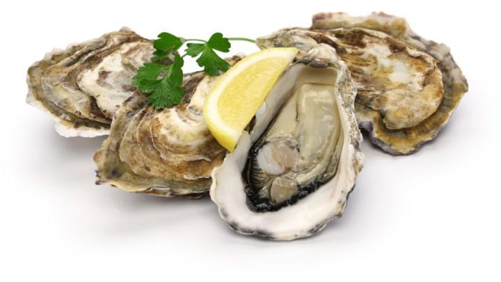Mangez des huîtres!