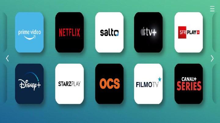 Quelle place pour les films français sur les plateformes SVOD dans le monde ?