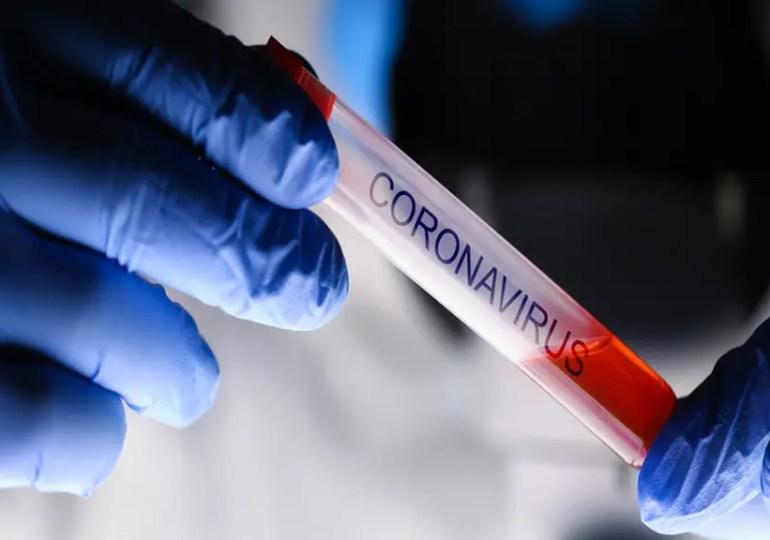 Coronavirus: quelle conséquence pour les écoles à l'étranger?