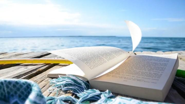 Une sélection de livres pour cet été ! Pour tous les âges et tous les styles.. De Villiers à Twilight !