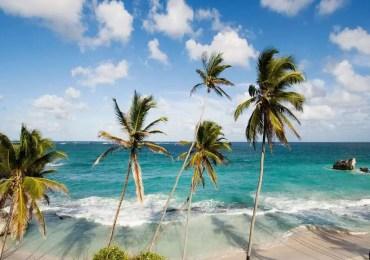 Expatriation, les Barbades ouvrent les bras aux télétravailleurs