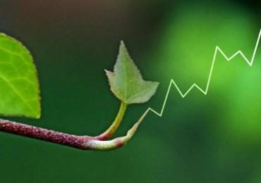A la recherche d'une croissance soutenable
