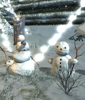 Les concours de l'hiver