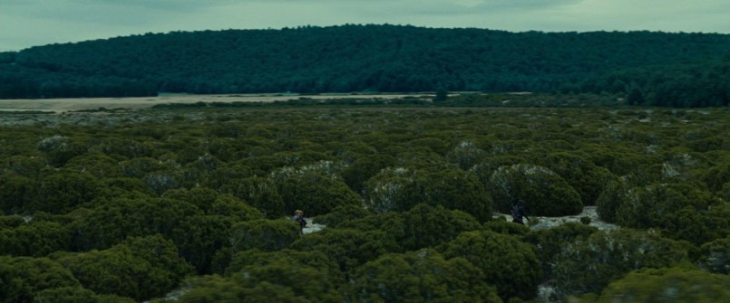 movie_Bree land 2