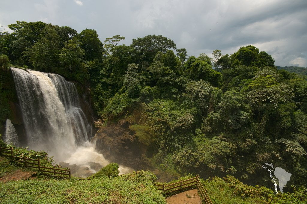 cascade honduras forêt