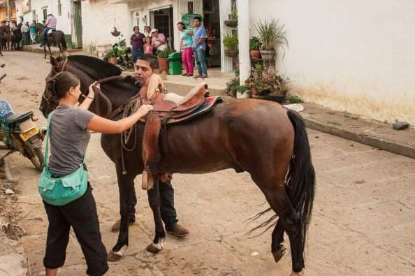 cabalgata paramo chevaux défilé colombie