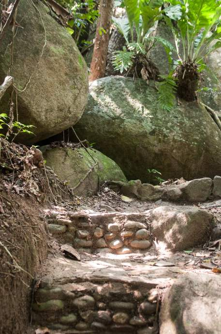 chemin camping tayrona