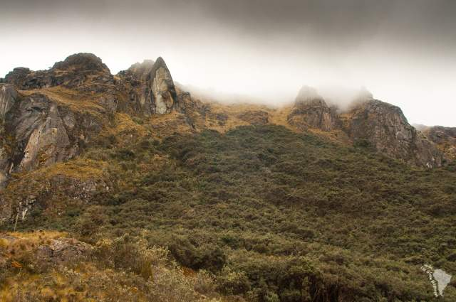 Montagne embrumée d'El Cajas