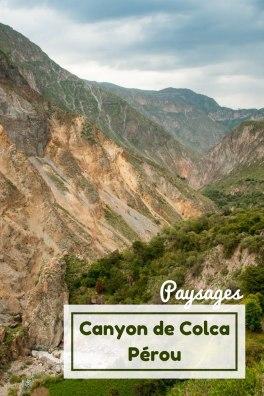 Guide pratique pour visiter le canyon del colca