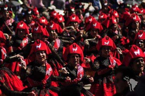 Danseuse de llamerada et leurs chapeaux à icône de llama