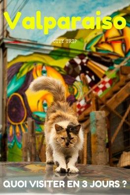 Guide de Valparaiso au Chili