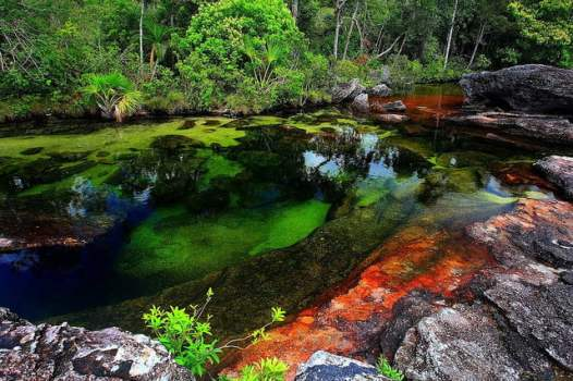 canyon cristales colombie