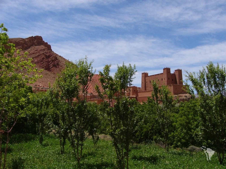 vallée rose maroc