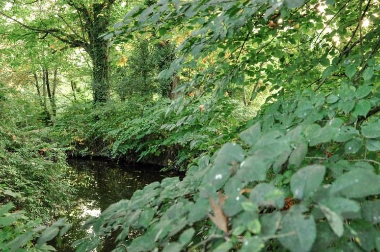 prairie-st-martin-riviere
