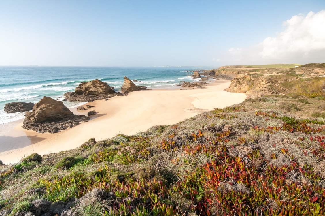 Praia samouqueira plante rocher