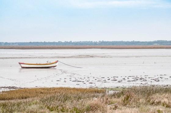 estuaire tage bateaux-2748