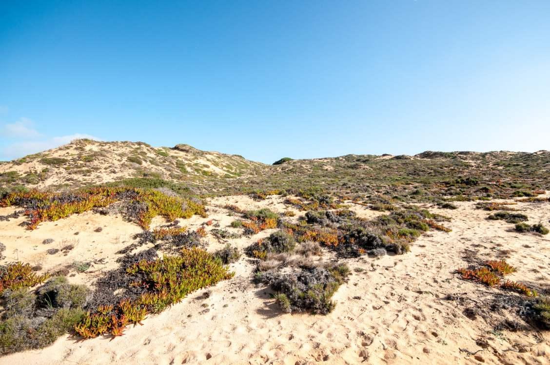 almogarve dunes