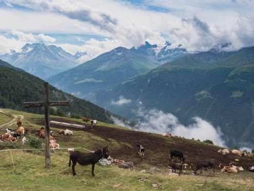 Alpage de Loveignoz - val d'herens suisse