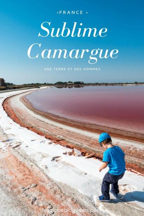 guide pratique et récit pour un voyage en camargue - France