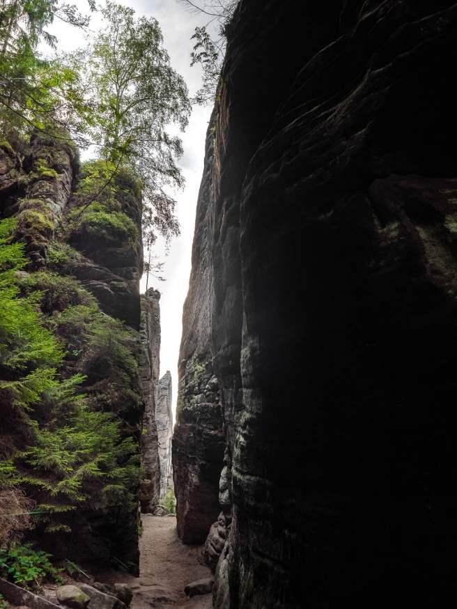 prachovske skaly dans le pradis tchèque