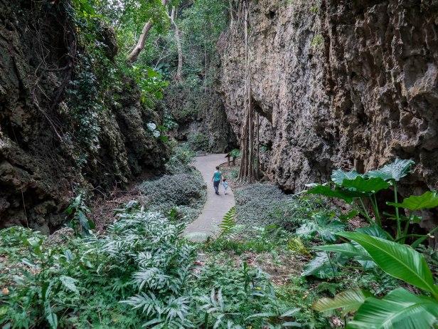 parc forestier kending chemin