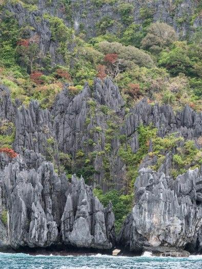El nido falaise calcaire