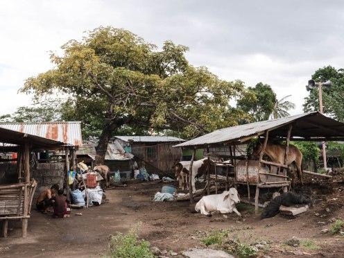 Tagaytay village