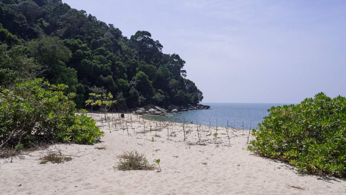 Penang parc naturel plage